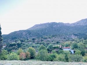 夏の避暑地として利用している人もいる村ですが、家の件数は 3-40軒ほど。冬場は、20軒になります